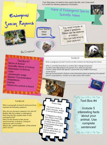 This is a brilliant research project template for younger learners.
