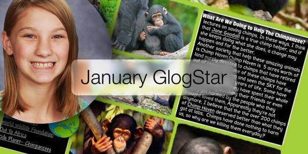 glogster_jan